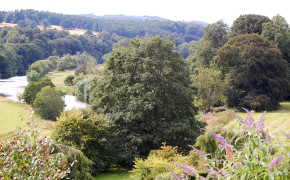 The river Teviot